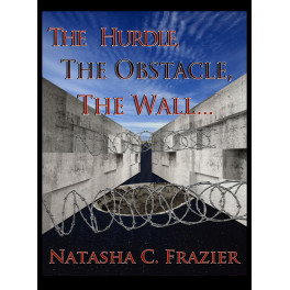 The Hurdle, The Obstacle, The Wall